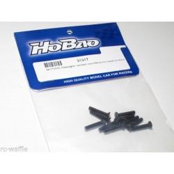 F/H screw M3x17 - HoBao (31317)
