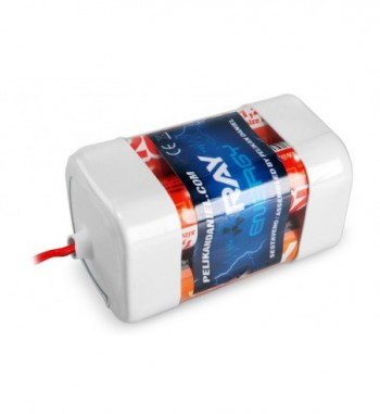 Pack bateria para receptor NiMH 4.8v 2000 mAh AA LONG RAY - Tipo 2